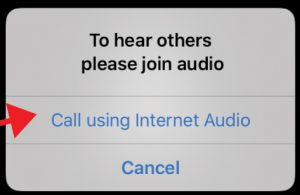"Even though your audio will be muted for most programs, you will still want to hear the instructor. If prompted, tap ""Call using Internet Audio"" or you can tap ""Join Audio"" once you are in the program, on the bottom left menu."
